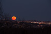"""Super Full Moon"" : Lee & I headed to Arlington Heights to watch the moonrise -- largest full moon in almost 20 years."